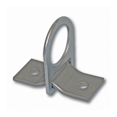 00360 Guardian D Ring 2 Hole Anchor Plate
